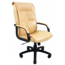 Кресло Рио пластик скаден